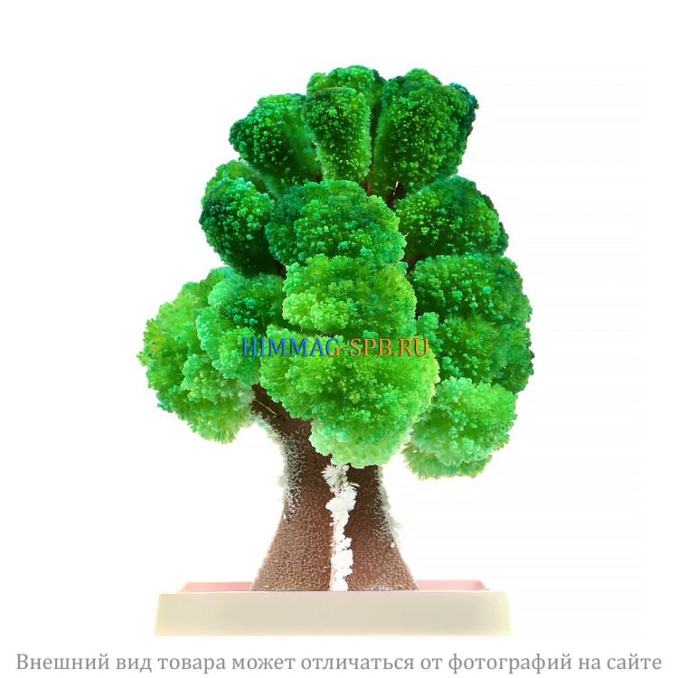 """""""Волшебное дерево"""" набор для опытов"""