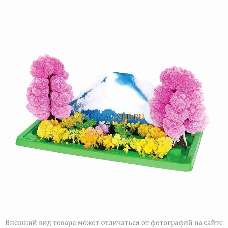 Волшебный сад из кристаллов